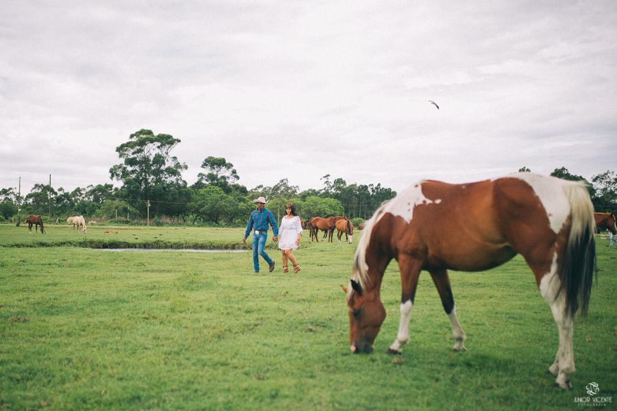 pre-casamento-cavalos-bruno-e-jaqueline-1